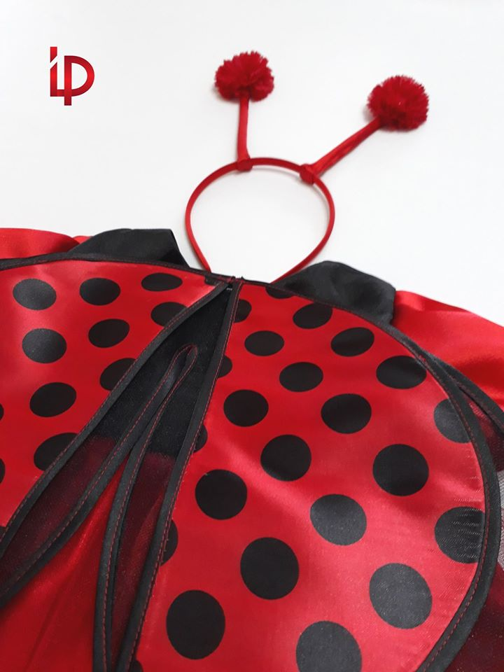 Buburuza - Costum de buburuza - 2-3 ani - marimea 98 - Chirie